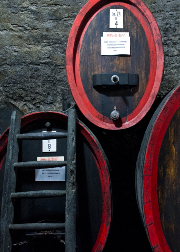 visit to the ancient cellar of the medieval Sondrio village