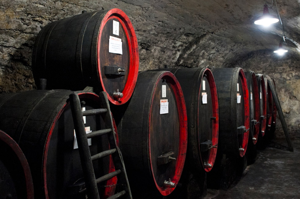 Visit to the medieval cellar of Sondrio