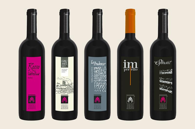 tour ebike degustazione vini marsetti