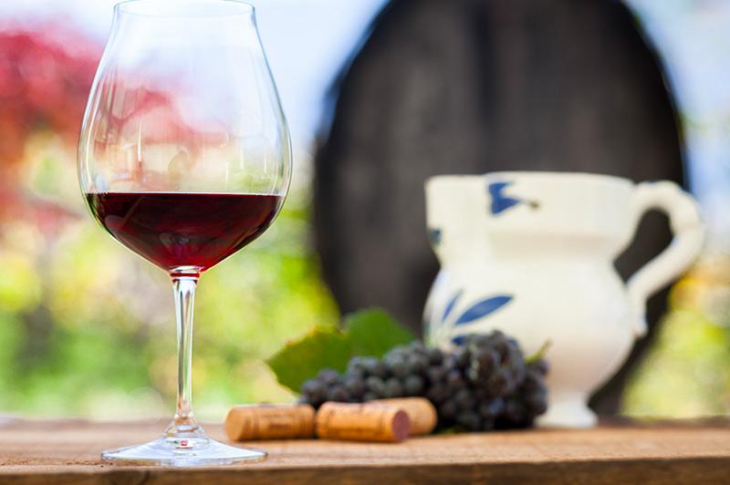 tour ebike restaurant il poggio lunch with wine