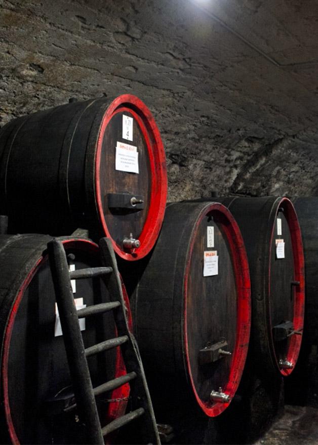 tour in cantina sotterranea e degustazione vini