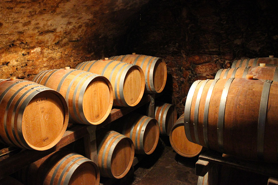 City tour in Sondrio with visit to the historic cellars