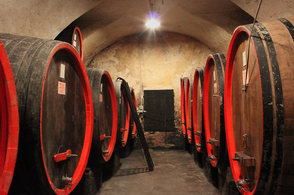 winery visit with tour in Sondrio